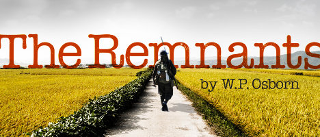 Remnants cover468
