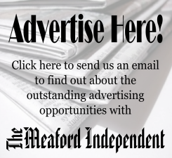 advertise here1 n