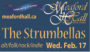 strumbellas jan29