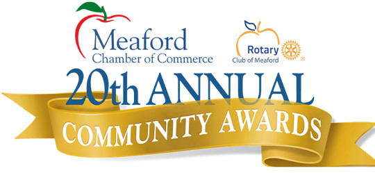 community awards 2018 logo540