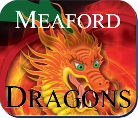 NEW Dragons logo 270