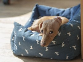 indoor air pets 270