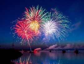 pets fireworks 2020 270