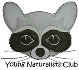 young naturalists270
